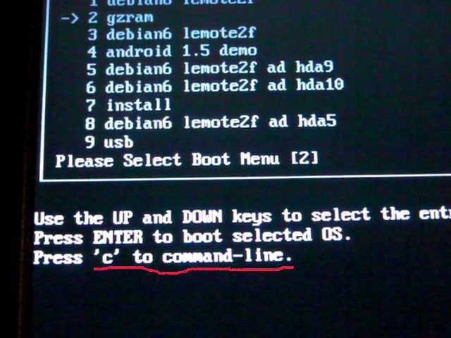 在boot_menu菜单下,按C键 , 进入pmon命令行